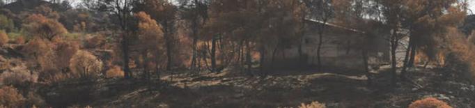 La UdL, en un projecte internacional per gestionar grans incendis forestals a Europa