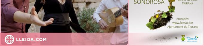 Tiurana gaudirà per primera vegada del Festival de Música Antiga dels Pirineus