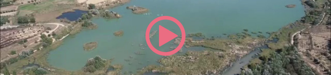 ⏯️ El buidatge parcial de l'estany d'Ivars i Vila-sana millora la qualitat dels sediments