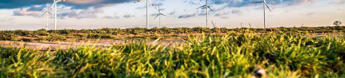 El Govern denega dos projectes de parc eòlic a la Segarra