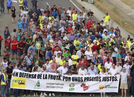 Lleida sol·licita retirar 17.129 tones de fruita de pinyol