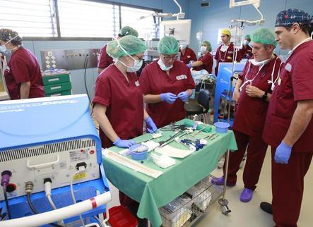 El centre biomèdic experimental de Torrelameu atreu cirurgians de tot Espanya