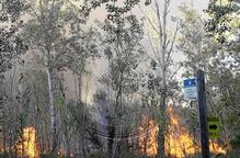 L'incendi de la Mitjana seria provocat