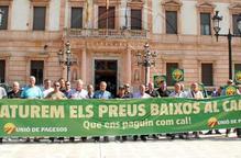Productors de Lleida sol·liciten crèdits bonificats a l'Estat