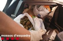 Detingut un veí de Balaguer que amagava dues bosses de marihuana al maleter