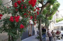 """Una vintena de municipis volen """"pujar l'autoestima"""" de les Garrigues decorant els carrers"""