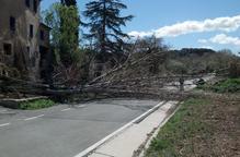 Un temporal de vent amb epicentre a Tarragona provoca incidències a Lleida