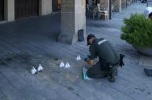 Destrueixen nius d'orenetes a Balaguer i les Borges Blanques