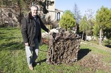 Nius artificials per traslladar les cigonyes a Bellpuig