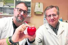 El Centre Sanitari del Solsonès estrena nou dispositiu per a Cardiologia