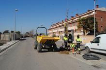 Mollerussa inicia la recollida de restes de poda i jardí
