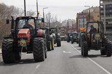Els pagesos exigeixen a Madrid mesures urgents per a la subsistència del sector