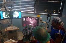 Quinze digestòlegs, en un curs d'endoscòpies al CREBA