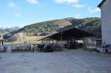 Ramaders denuncien excés de controls a l'Alt Urgell