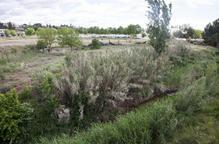La riba del riu Ondara de Tàrrega, un espai de lleure