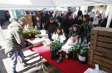Arbeca ensenyarà a turistes a collir olives per 5 euros