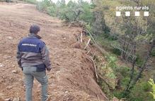 Denunciat per una tala il·legal d'arbres al Pallars Jussà