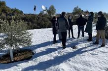 Vilalta prioritza els projectes locals de dinamització