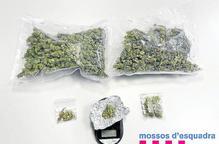 Detinguts a la Bordeta per tràfic de marihuana
