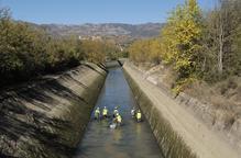 Rescaten 1.400 peixos al canal de Gavet per reparar-lo