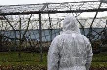 Alerta a Catalunya davant els brots de grip aviària en granges franceses
