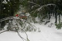 Els bombers evacuen set persones atrapades per les nevades en una casa rural de Coll de Nargó