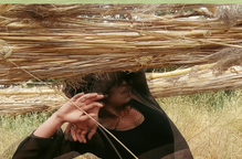 ⏯️ El cultiu de la Dansa, l'Art i la Natura, a la segona edició del Festival Natures
