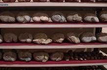 Recuperen 20.000 peces arqueològiques espoliades, bona part de jaciments del Pallars Jussà i l'Alt Urgell