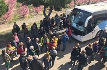 """Aitona rep milers de visitants en un cap de setmana """"històric"""" a la campanya de la floració"""