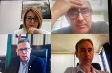 Captura de pantalla de la reunió del Consell d'Administració del Patronat de Turisme de la Diputació de Lleida
