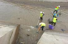 Imatge del rescat de peixos que s'està fent abans de buidar els canals de Balaguer, Térmens i Lleida