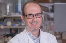 Pla mitjà del cap del servei d'Endocrinologia i Nutrició de l'Hospital Universitari Arnau de Vilanova i professor de la UdL Albert Lecube