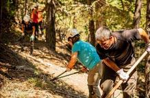 Pla general de voluntaris treballant al bosc l'estiu del 2020