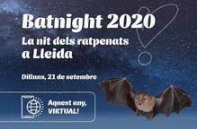 Lleida se suma a la Nit dels Ratpenats que, enguany, serà virtual