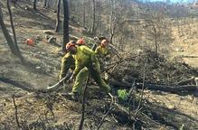 Unió de Pagesos insisteix en la necessitat de millorar les assegurances per l'incendi de la Ribera d'Ebre