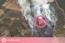Estabilitzat l'incendi que ha cremat 55 hectàrees agrícoles i forestals de Catalunya i l'Aragó