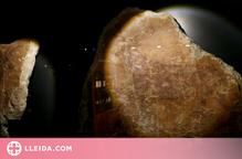 El Museu de Lleida mostra per primera vegada fragments de pintures rupestres de Terol