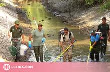 Rescaten més de 5.000 truites i altres espècies del canal de Sossís