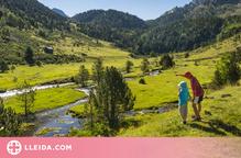 Ponent i l'Alt Pirineu i Aran van rebre entre juny i juliol més de 235.000 viatgers