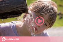 ⏯️ Tot el que has de saber per beure aigua potable si fas una escapada a la natura