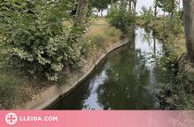 Les Borges amplia la barrera de protecció a l'entorn del Canal d'Urgell