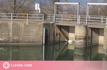 Instal·len tanques perimetrals als canals de Vilaller i Gavet per evitar que la fauna hi caigui