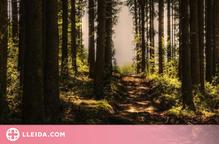 Un estudi parla del benefici dels espais verds durant el confinament per la salut mental