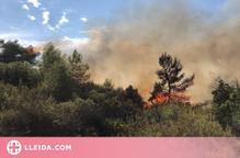 Un incendi forestal crema uns 7.000 metres quadrats a les Garrigues