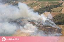 Dos incendis cremen vegetació agrícola a la Segarra i l'Alt Penedès