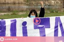 Dona puny alçat acte institucional 8-M