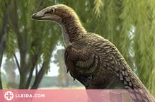 Uns fòssils del Pallars Jussà permeten identificar un dinosaure fins ara desconegut a Europa