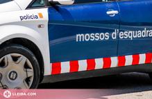Detingut a Lleida per robar en un vehicle i intentar comprar amb les targetes usurpades
