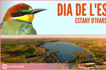 El Dia de l'Estany d'Ivars i Vila-sana celebrarà una doble jornada farcida d'activitats
