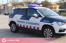 Detingut un jove per onze furts al Pla d'Urgell